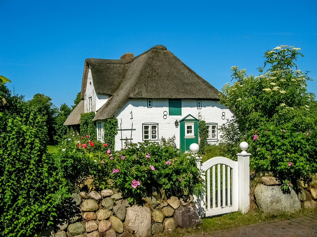 A a thatched-roof house.